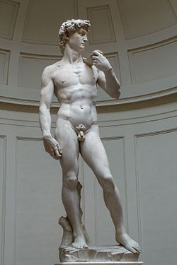 'David'_by_Michelangelo_JBU0001-1.JPG